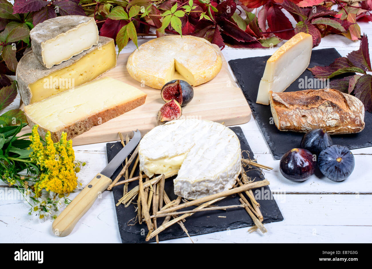 Camembert of Normandy with different French cheeses - Stock Image