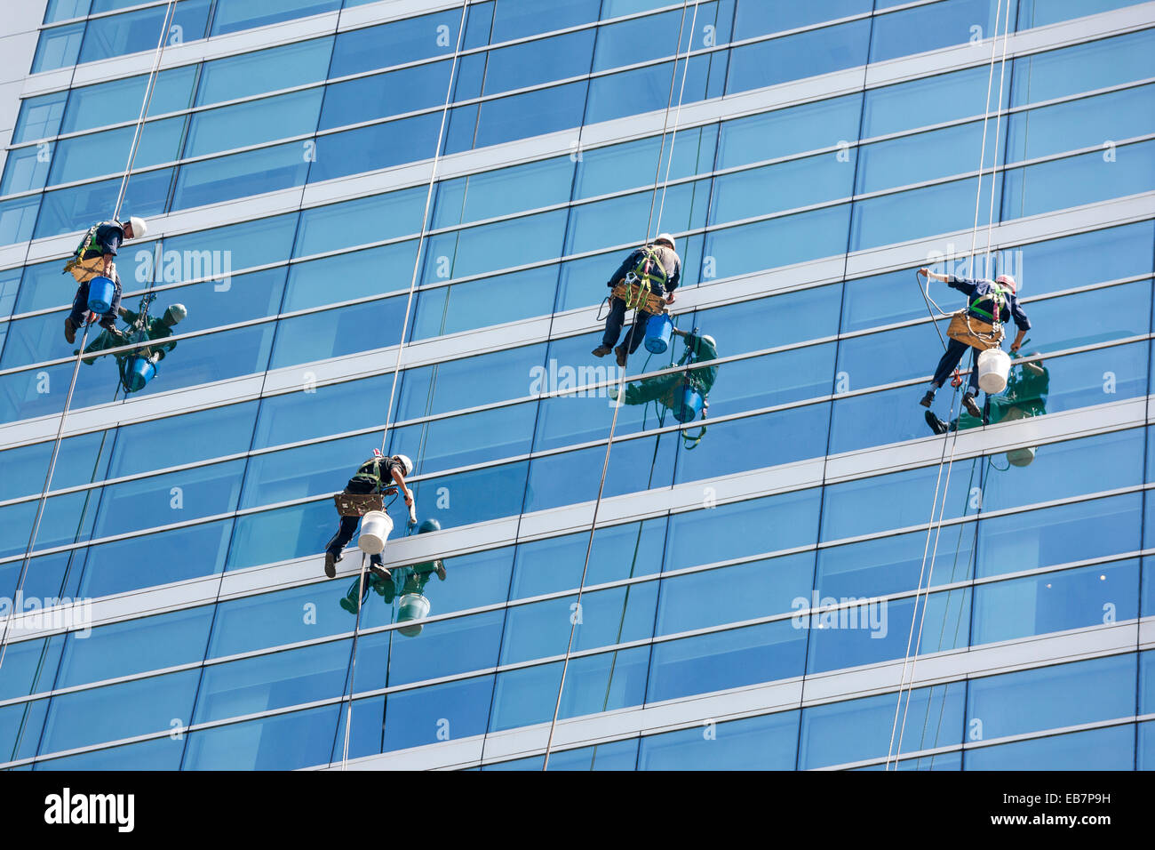 Window cleaners cleaning windows of modern office tower high rise building skyscraper using RDS ropes and bosun's - Stock Image