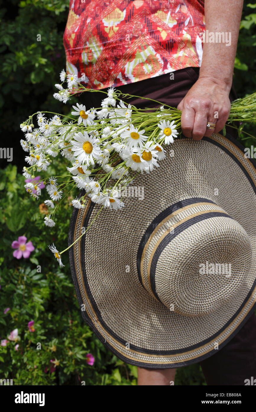A senior woman carrying a wide brimmed hat and a bouquet of daisies in the garden - Stock Image