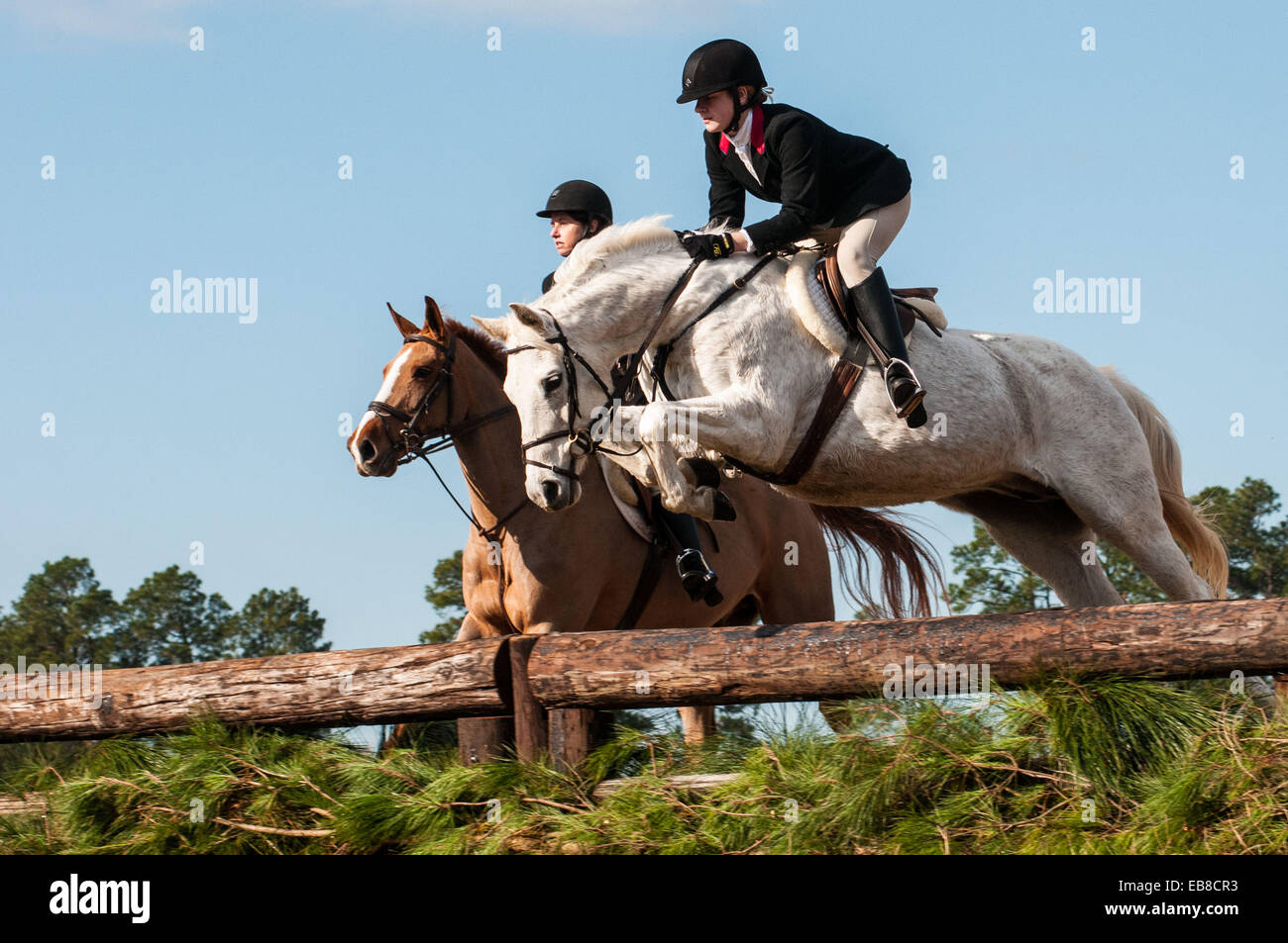 Mount Foster Stock Photos & Mount Foster Stock Images - Alamy