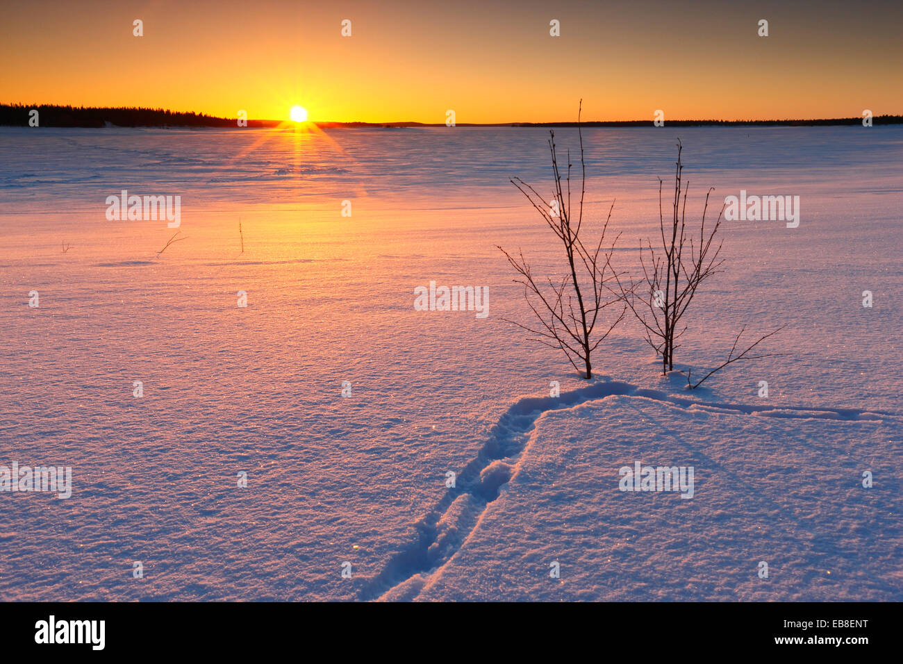 Winter landscape. Sunset in Lapland, Finland - Stock Image