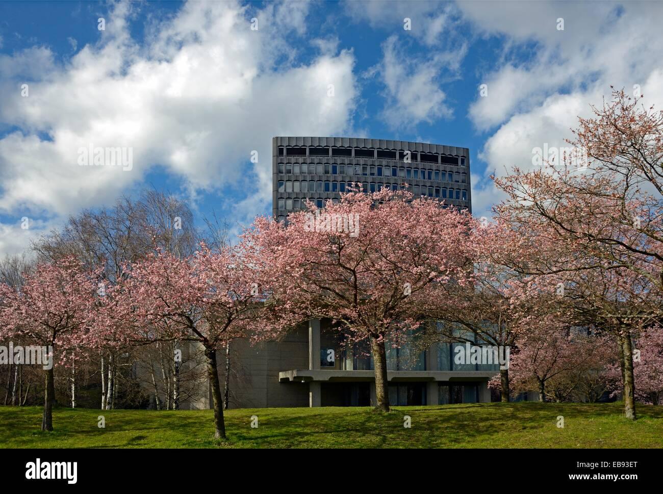 ILO, International Labor Office, spring, Geneva, Switzerland. - Stock Image