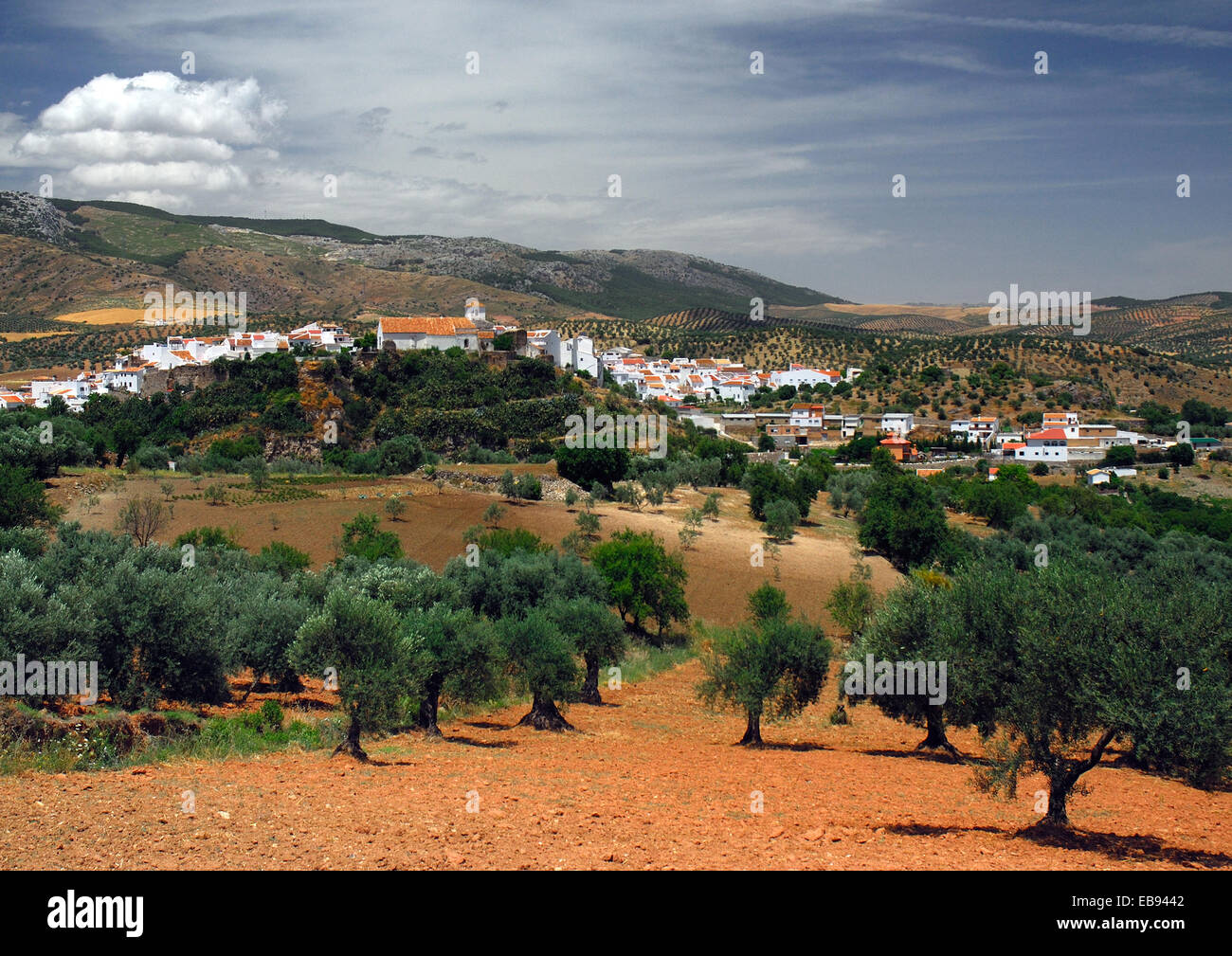 one of famous white villages in Andalusian inland, Andalusia, Spain. Stock Photo