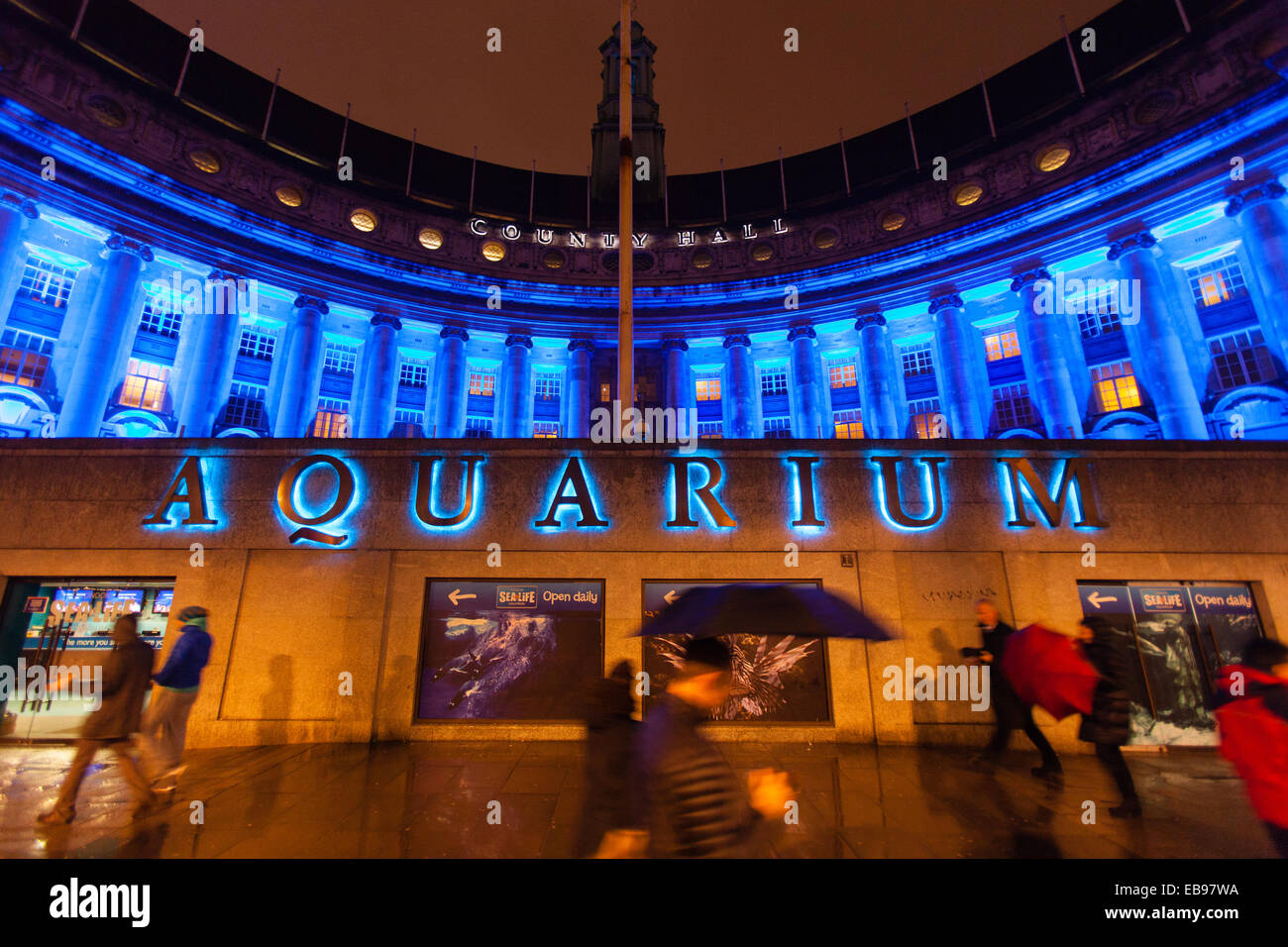 London Aquarium at night, South Bank, Westminster, London, England, Europe. - Stock Image