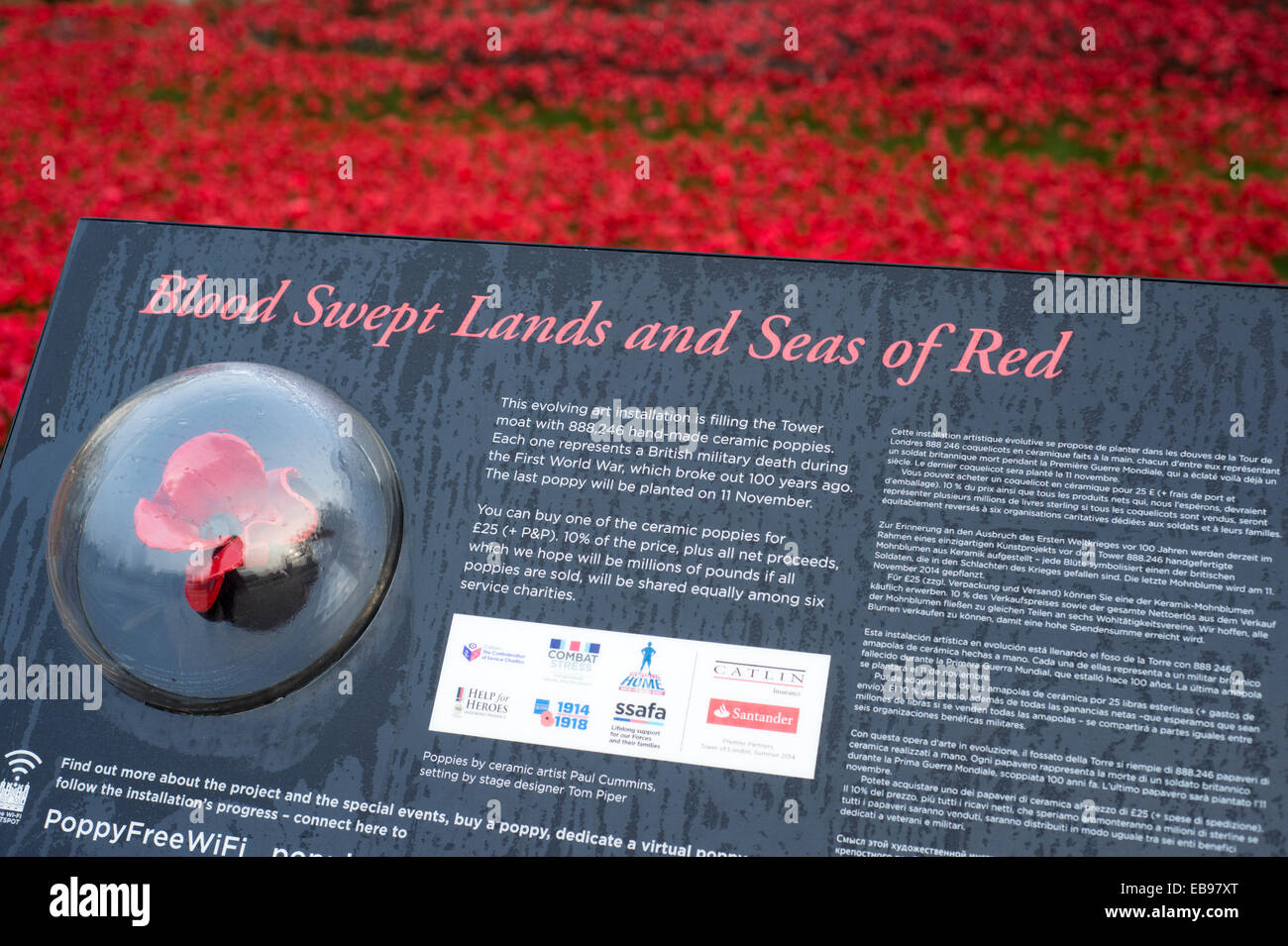 Ceramic poppies at the Blood Swept Lands and Seas of Red installation at the Tower of London, England, UK - Stock Image