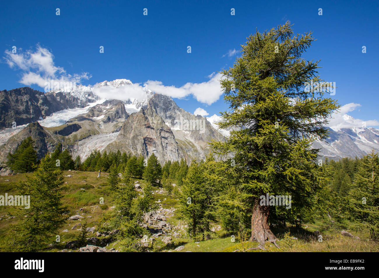 Looking towards Mont Blanc from above Val Veny, Italy. - Stock Image