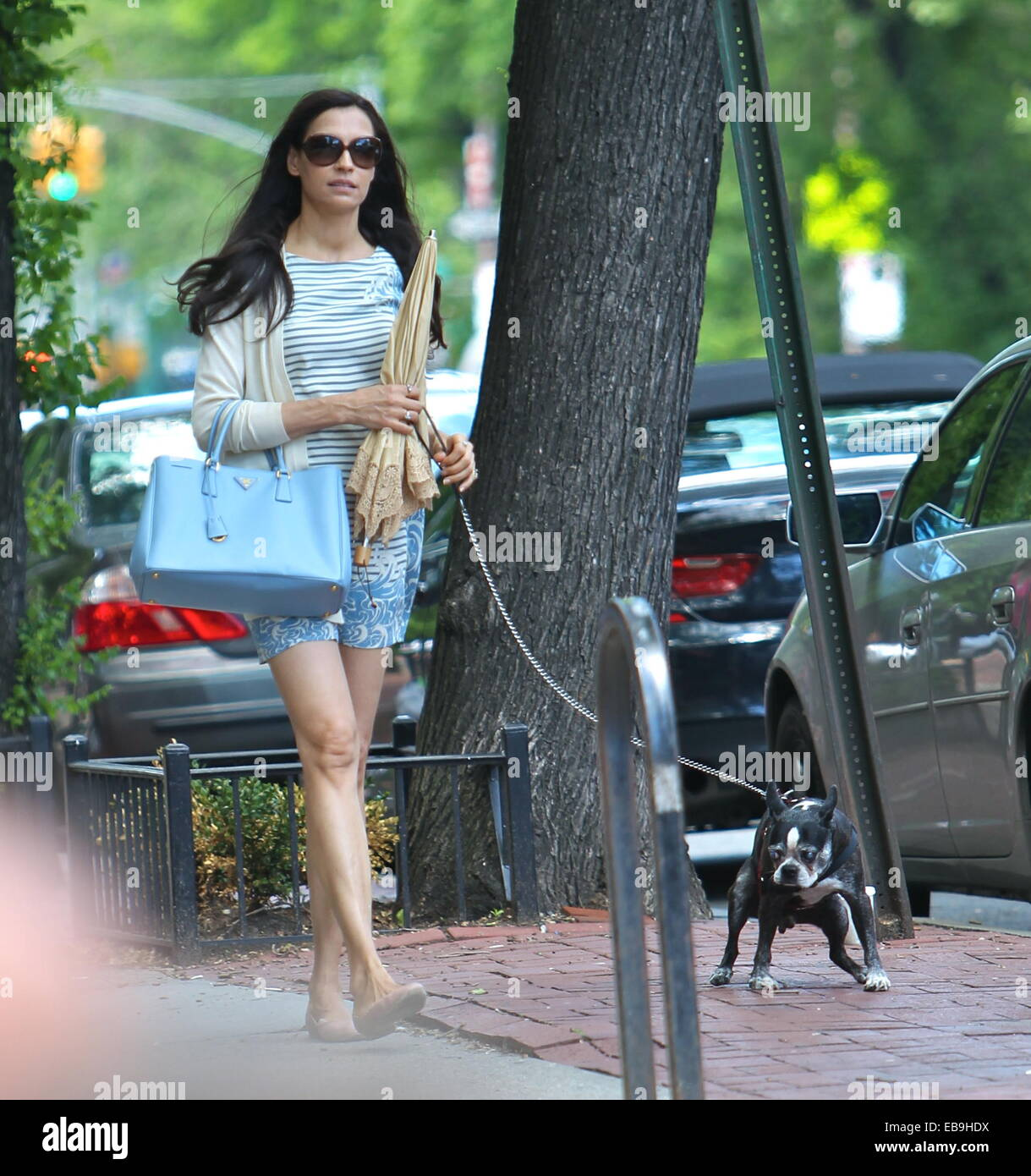 cd390db2e65a Famke Janssen and Cole Frates leave Bar Pitti in the West Village and walk their  dog