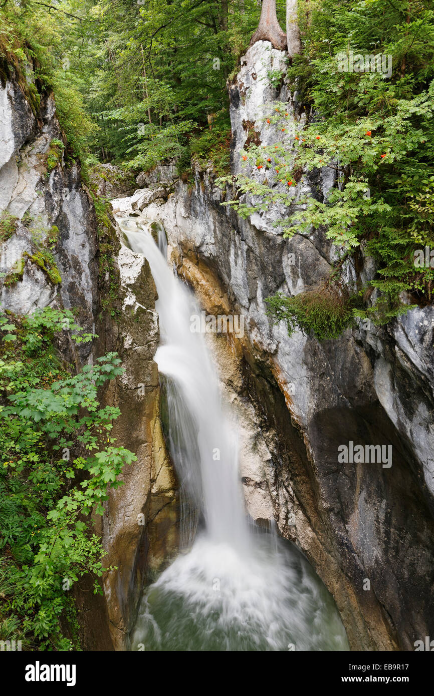 Tatzelwurm Waterfall, upper level, Oberaudorf, Mangfall Mountains, Upper Bavaria, Bavaria, Germany - Stock Image