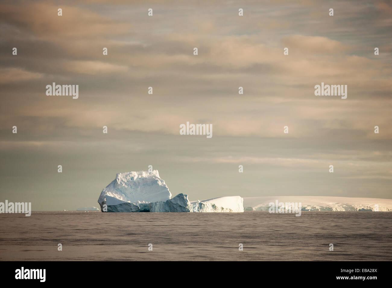 Icebergs in the morning light, Antarctic Peninsula, Antarctica - Stock Image
