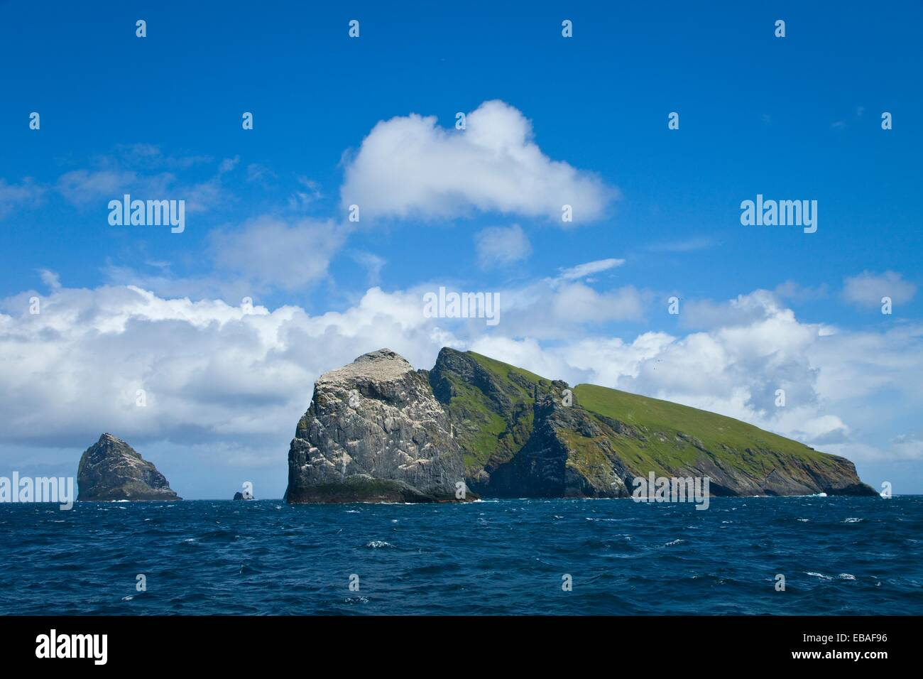 Stac Lee, Stac an Armin and Boreray Islands. Gannet colony. St. Kilda Archipelago. Outer Hebrides. Scotland, UK. - Stock Image