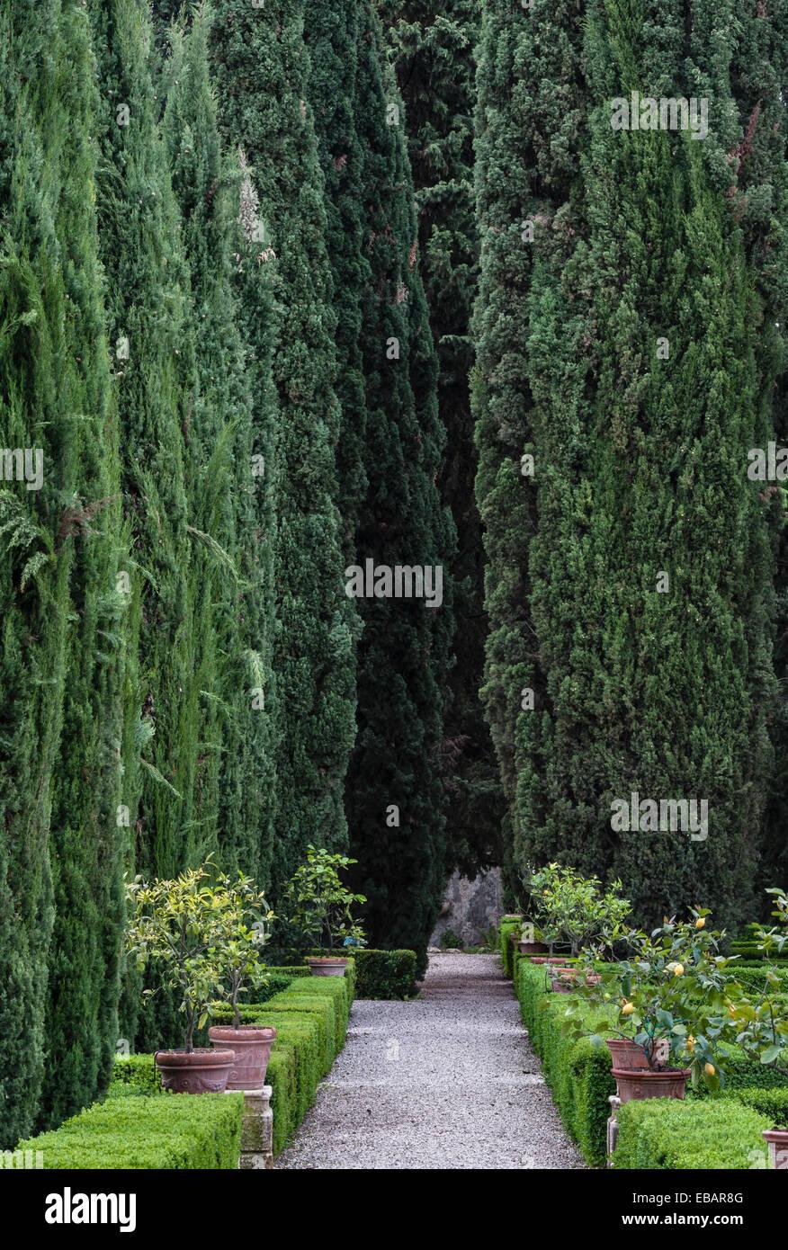 The Renaissance gardens of the Giardino Giusti, Verona, Italy. - Stock Image