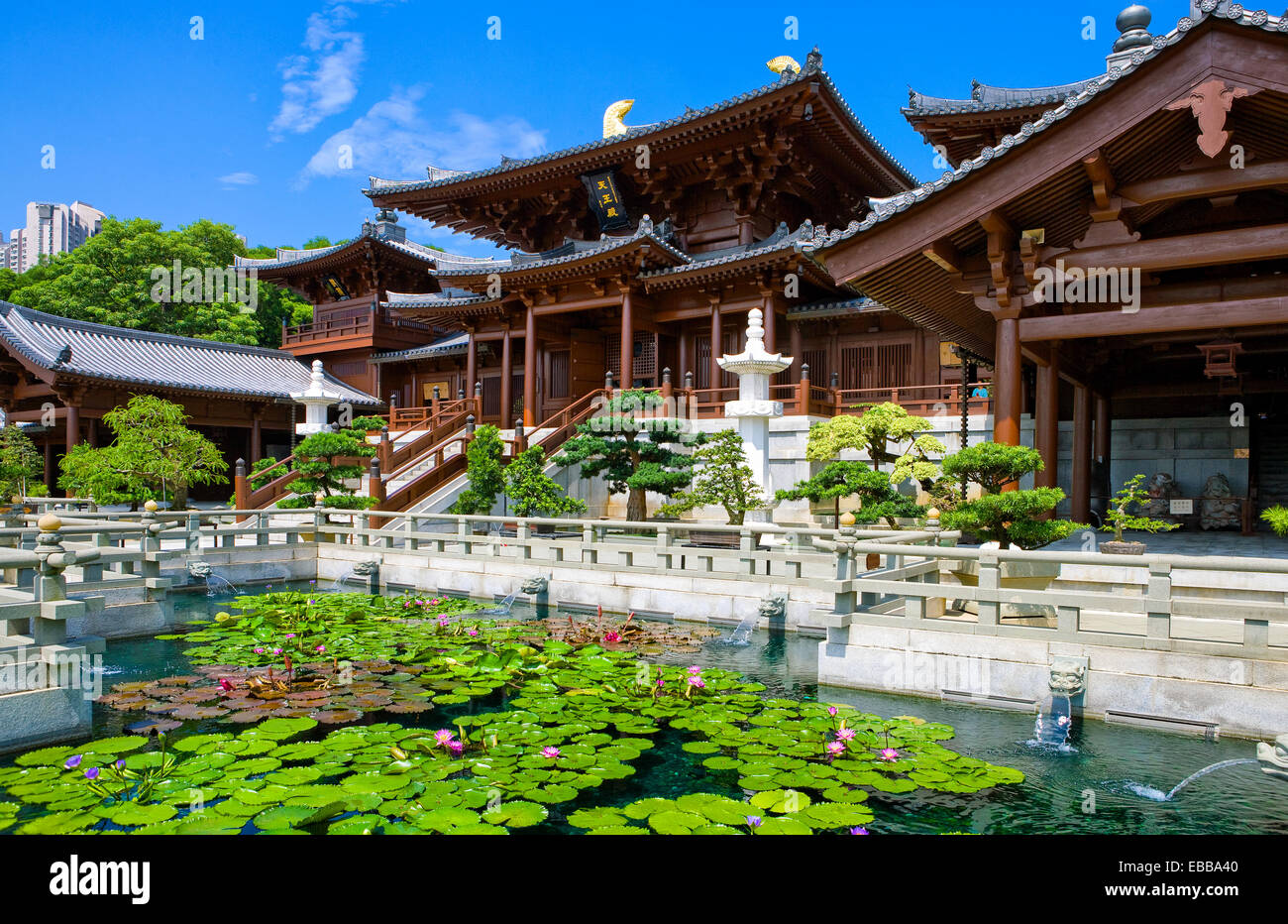 Hong Kong, the Chi Lin antique monastry in the new Kowloon quarter - Stock Image