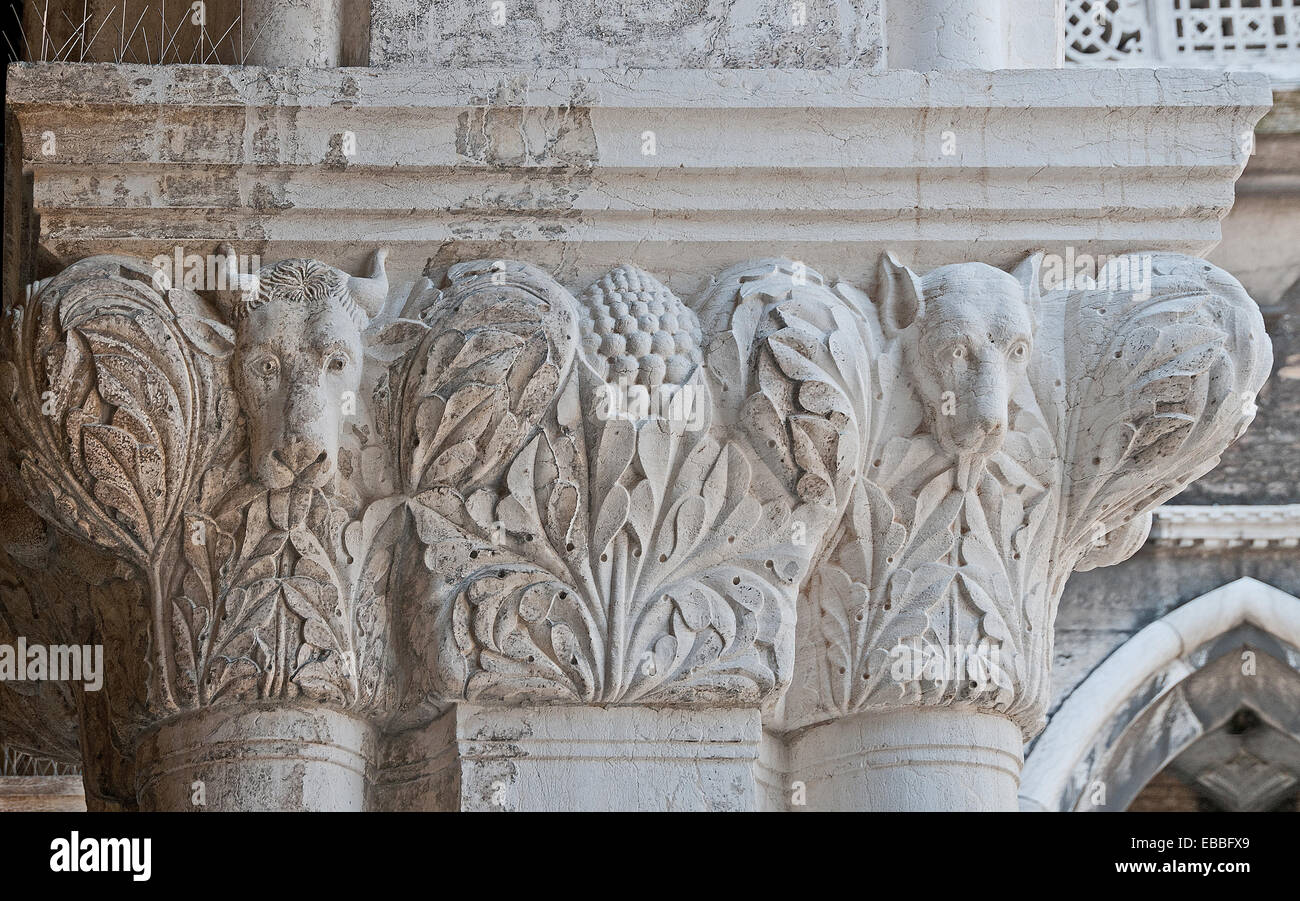 Detail of carving of bulls on capitol of pillars of upper corridor of Doges Palace or Palazzo Reale in Venice Italy - Stock Image