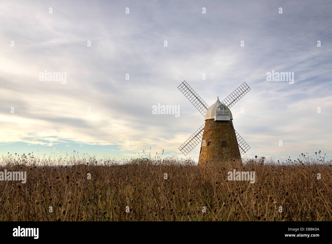 Halnaker tower windmill West Sussex UK - Stock Image