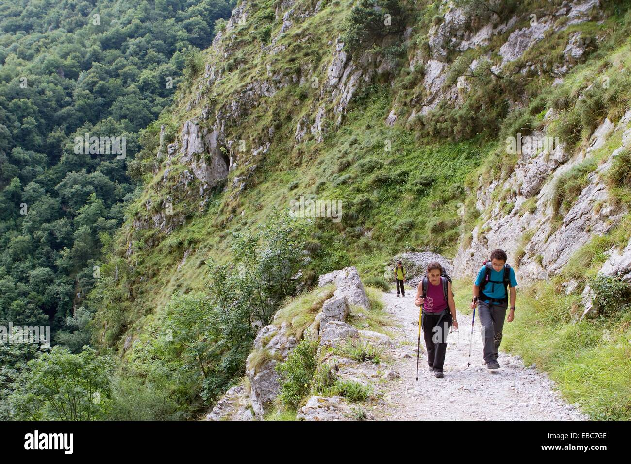 adult area boy Cantabria canyon child color image day eco-tourism equipment Europe excursion forest gorge Green - Stock Image