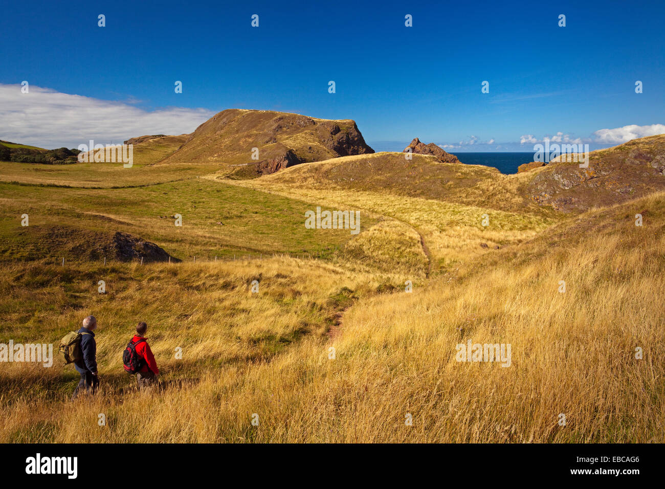 Walkers on a footpath at St Abbs Head - Stock Image