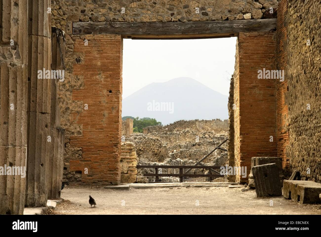 entrance of the Triangular Forum archeological site of Pompeii province of Naples Campania region southern Italy - Stock Image