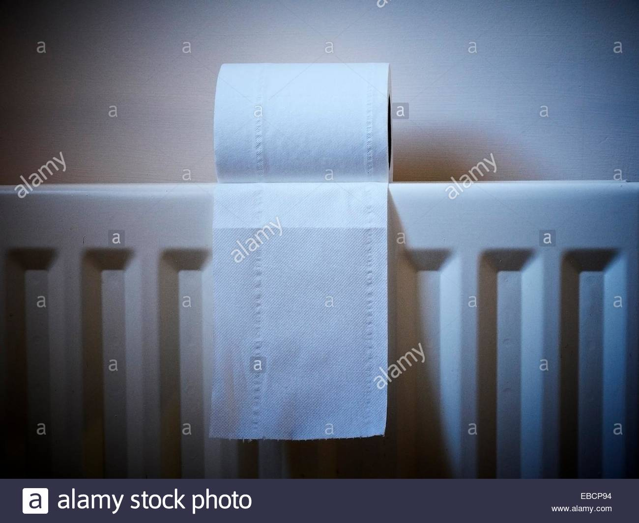 Radiator Voor Toilet : Close up of a toilet roll on radiator stock photo  alamy