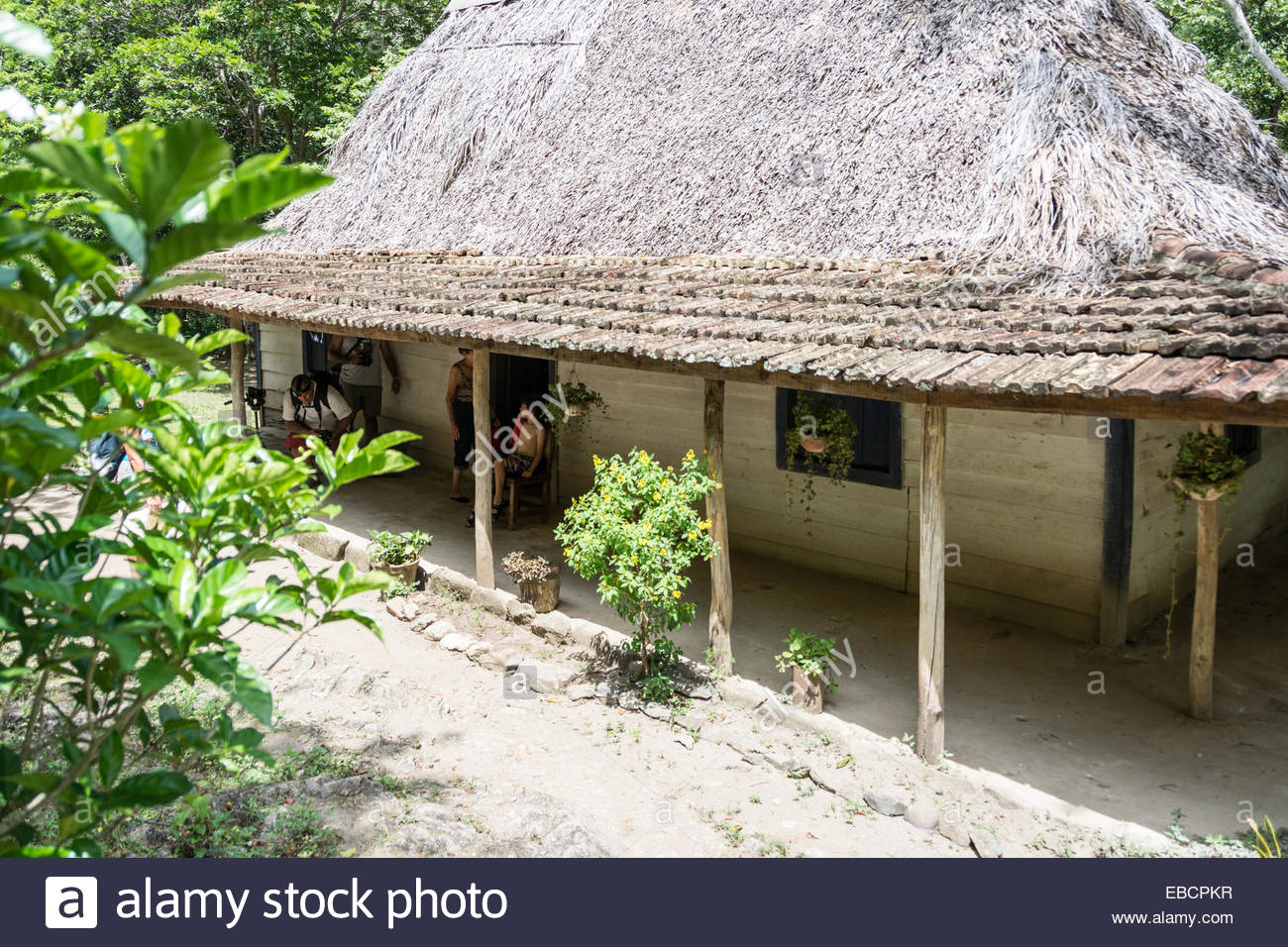 The traditional farmer's house in the Cuban countryside - Stock Image