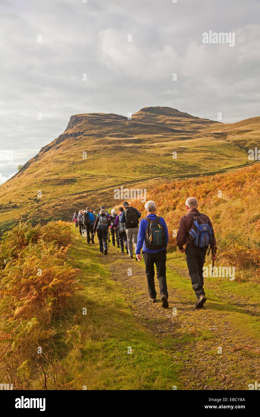 A Rambling Club approaching Dumyat in the Ochil Hills near Menstrie - Stock Image