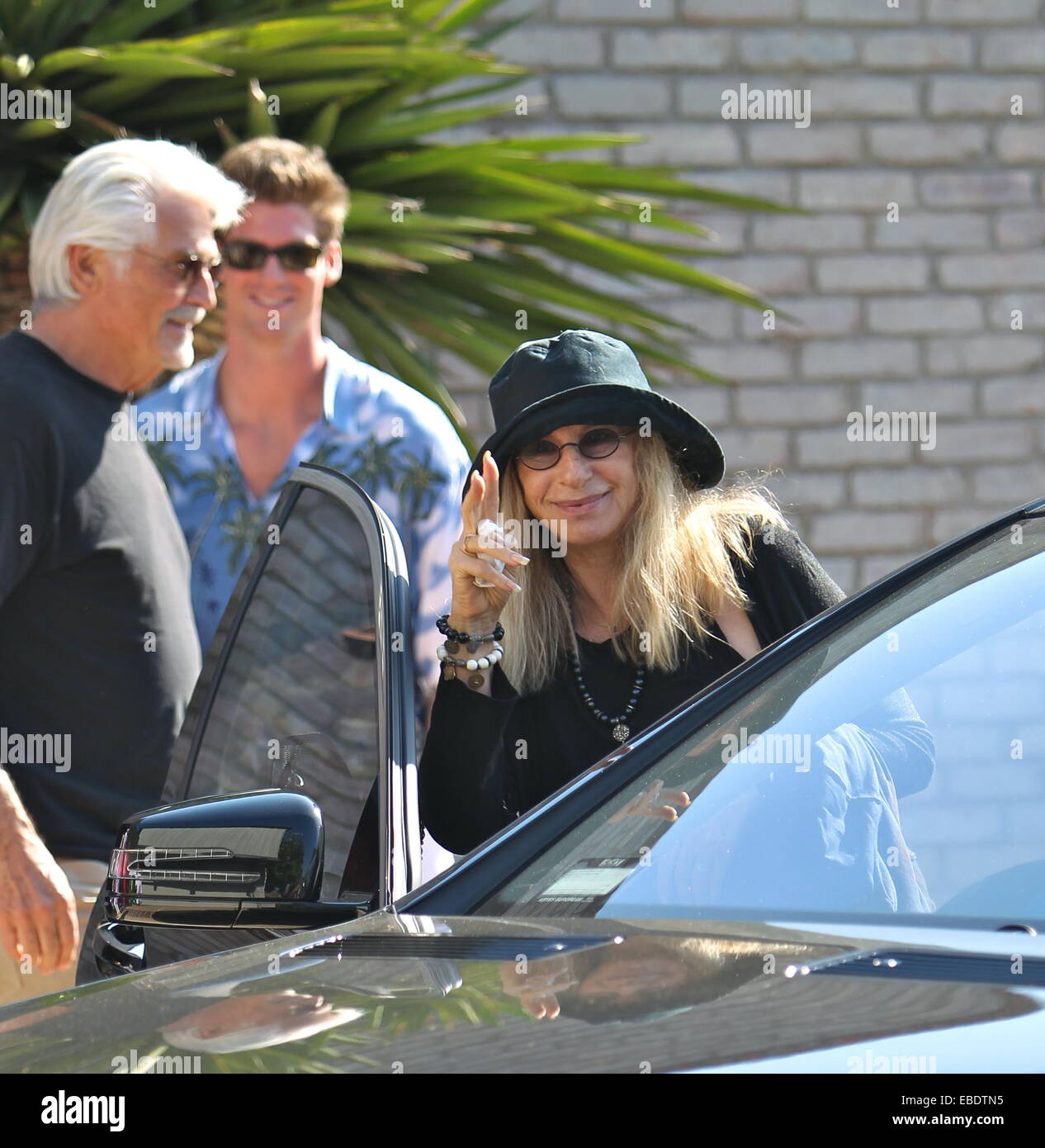 Barbra Streisand And James Brolin Leaving Joel Silvers Malibu Beach Stock Photo Alamy,Landscaping Backyard Ideas No Grass