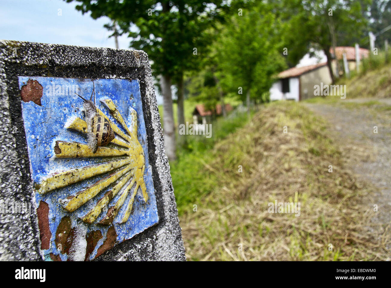 Snail in a sign at Primitive Saint James way, Asturias, Spain. - Stock Image