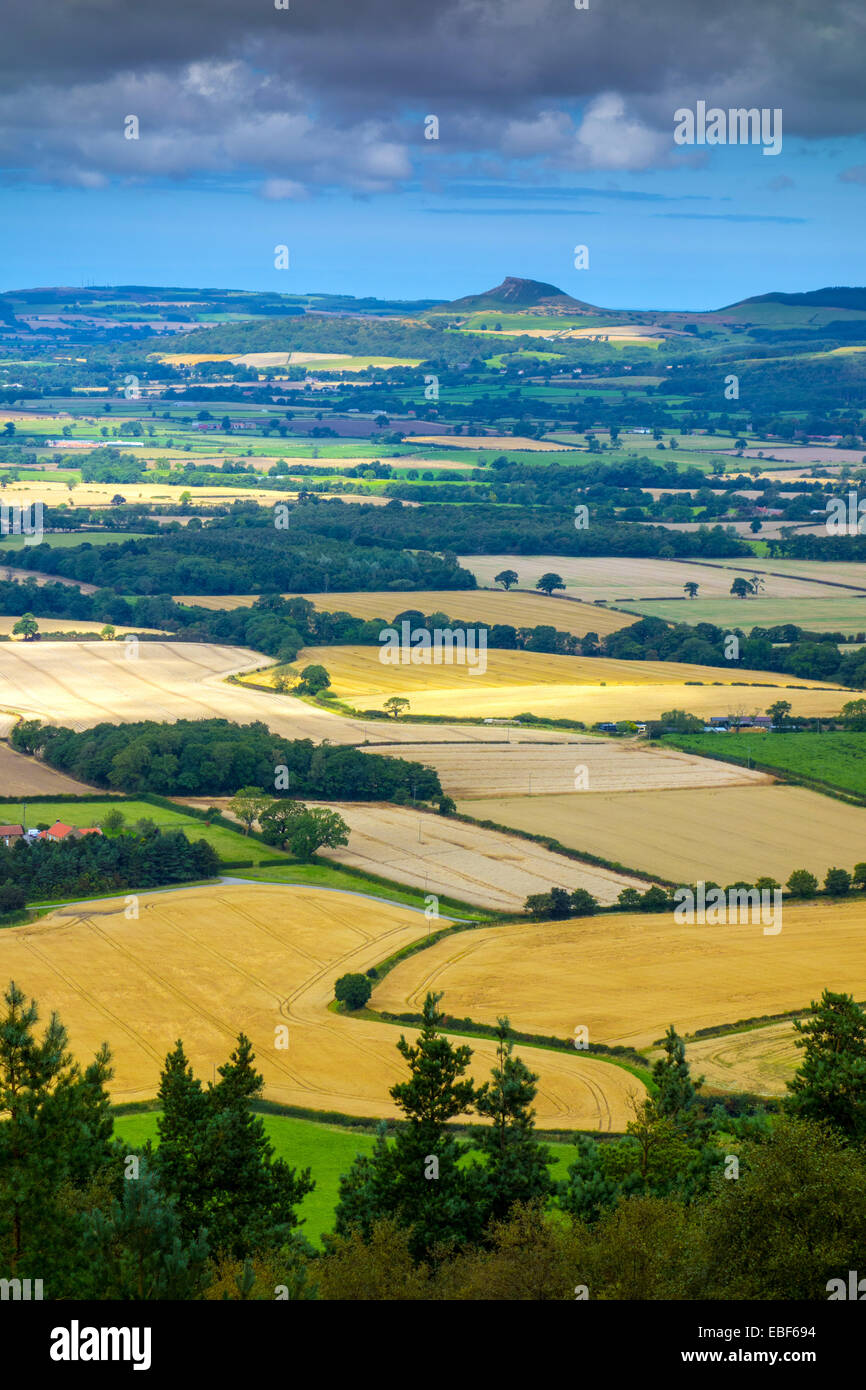Roseberry Topping from Hasty Bank, Cleveland, North Yorkshire - Stock Image