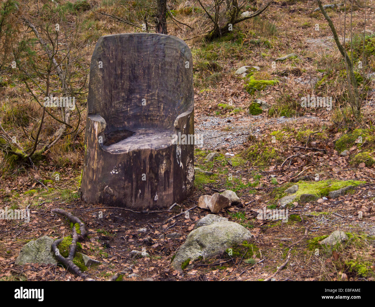 Tree stump chair firmly rooted to the ground and ready for weary hikers in the forests around Stavanger Norway - Stock Image