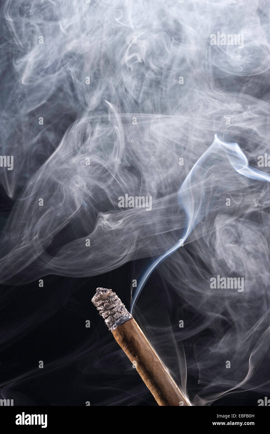Brown cigar with smoke on black background - Stock Image