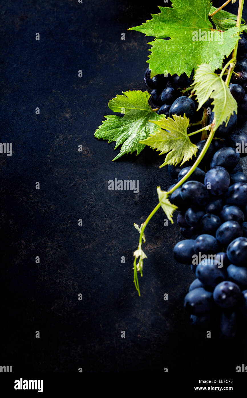 Food background with Fresh Grapes.  Lots of copy space. - Stock Image