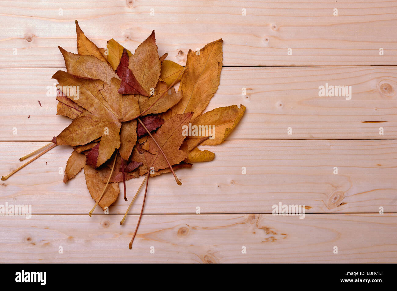 autumn yellow leaves on the background of wooden planks - Stock Image