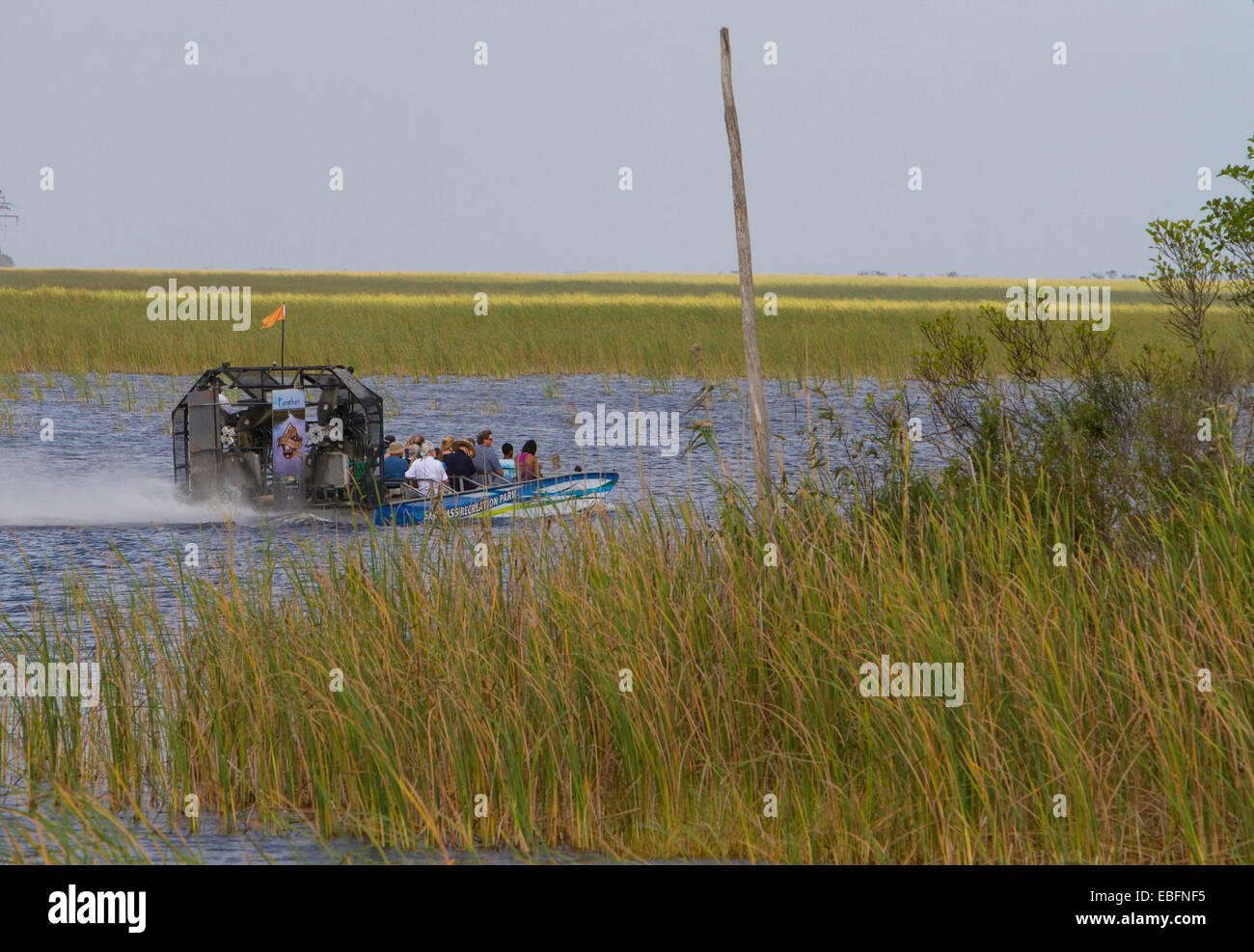 Sawgrass Recreation Park airboat tours west of Fort Lauderdale on the Alligator Alley in South Florida. - Stock Image