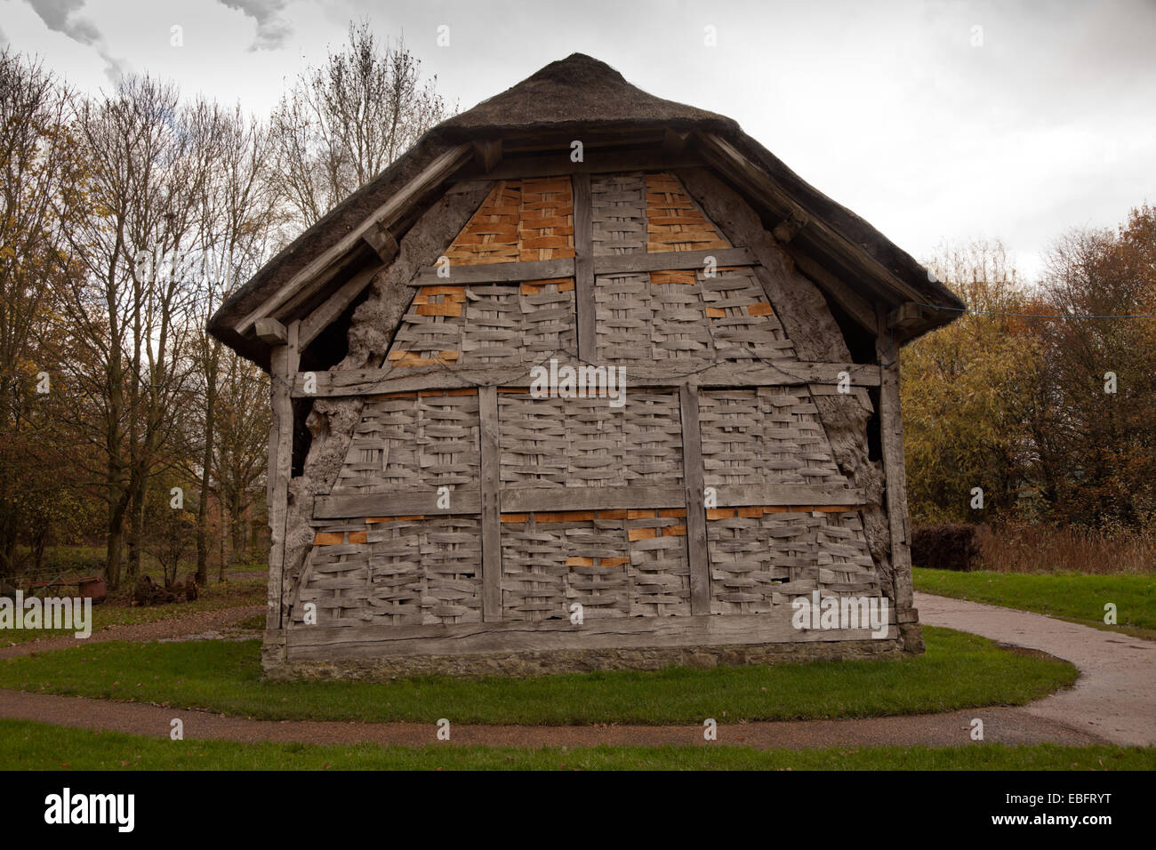 Thatched barn in Avoncroft Museum of Buildings, Worcs UK - Stock Image
