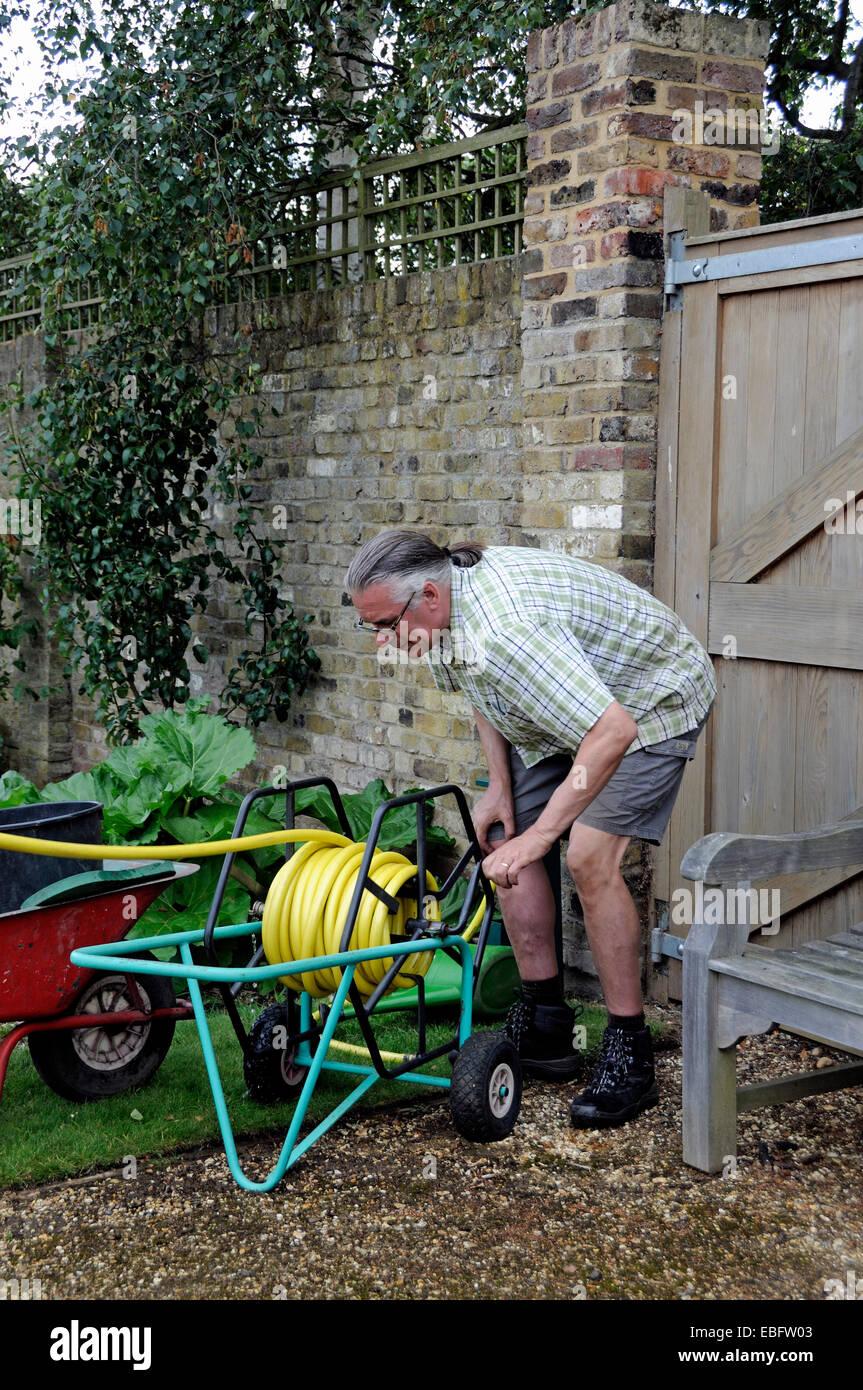 Man winding garden hosepipe onto trolley - volunteer at Chiswick House Kitchen Garden, London Borough of Hounslow - Stock Image