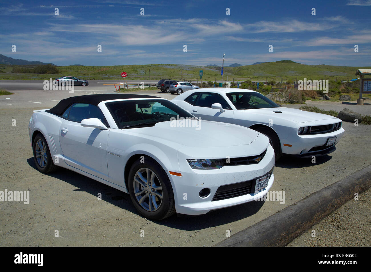 Chevrolet Comaro and Dodge Challenger sports cars by Pacific Coast Highway, near San Simeon, Central Coast, California, - Stock Image