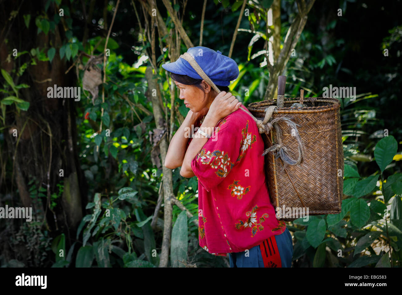 A Dayak woman carries her farming equipments on a rattan basket. © Reynold Sumayku - Stock Image