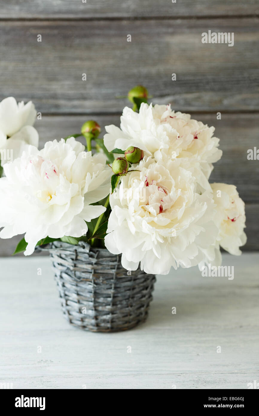 White peonies in a vase flowers stock photo 75959090 alamy white peonies in a vase flowers mightylinksfo