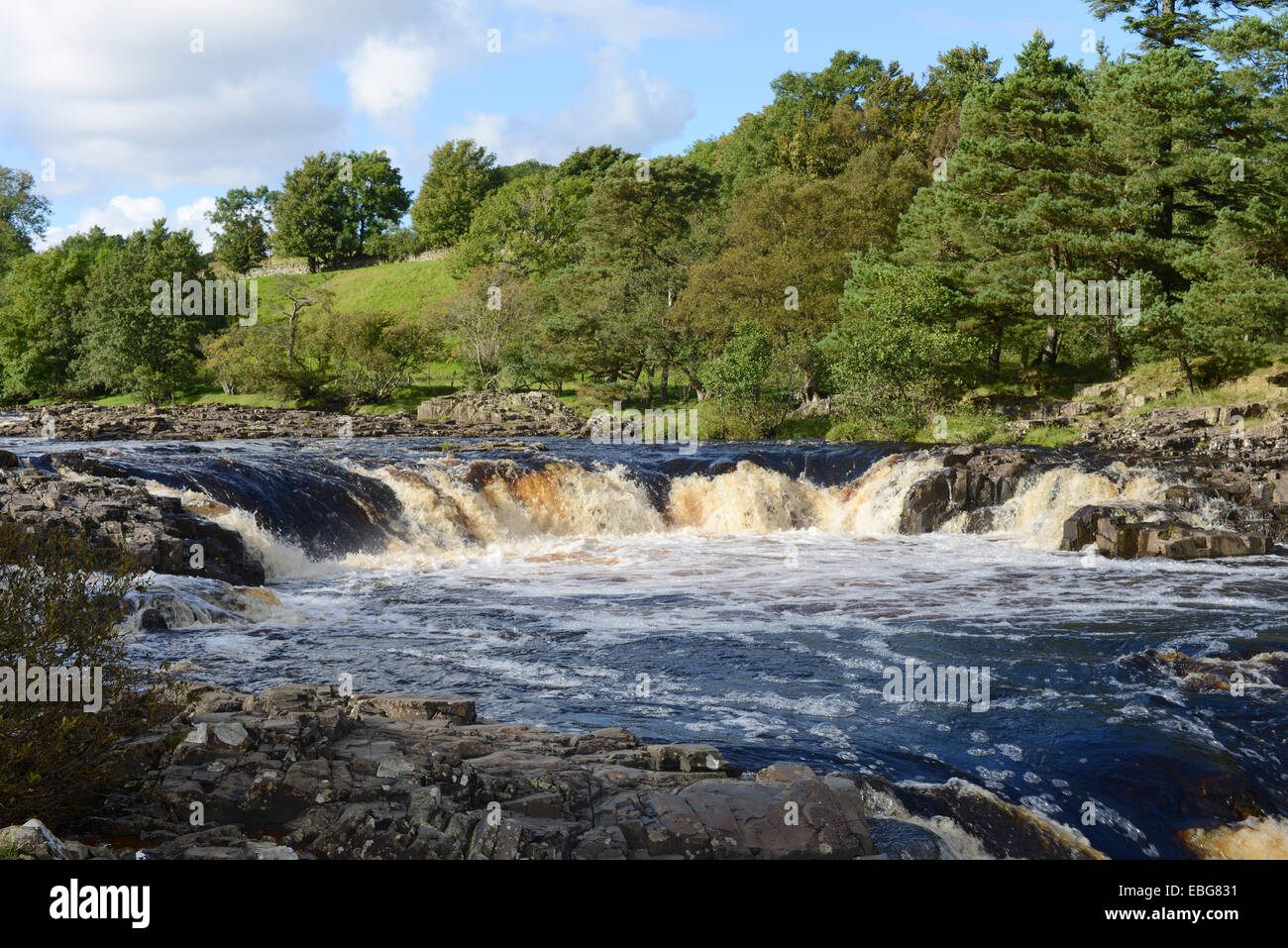 Low Force waterfall in Teesdale, UK - Stock Image