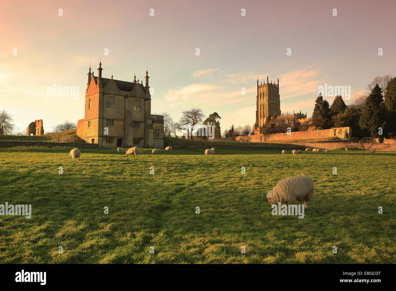 Sheep grazing below the Wool Church and the remains of the Old Manor House at Chipping Campden in the Cotswolds Stock Photo