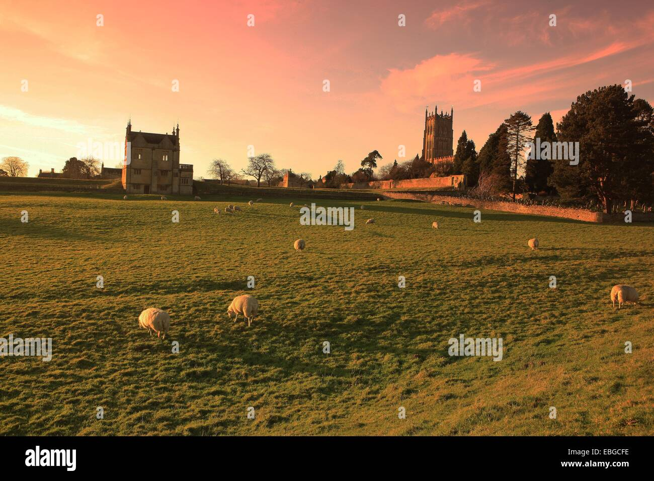 Sheep grazing below the Wool Church and the remains of the Old Manor House at Chipping Campden in the Cotswolds - Stock Image