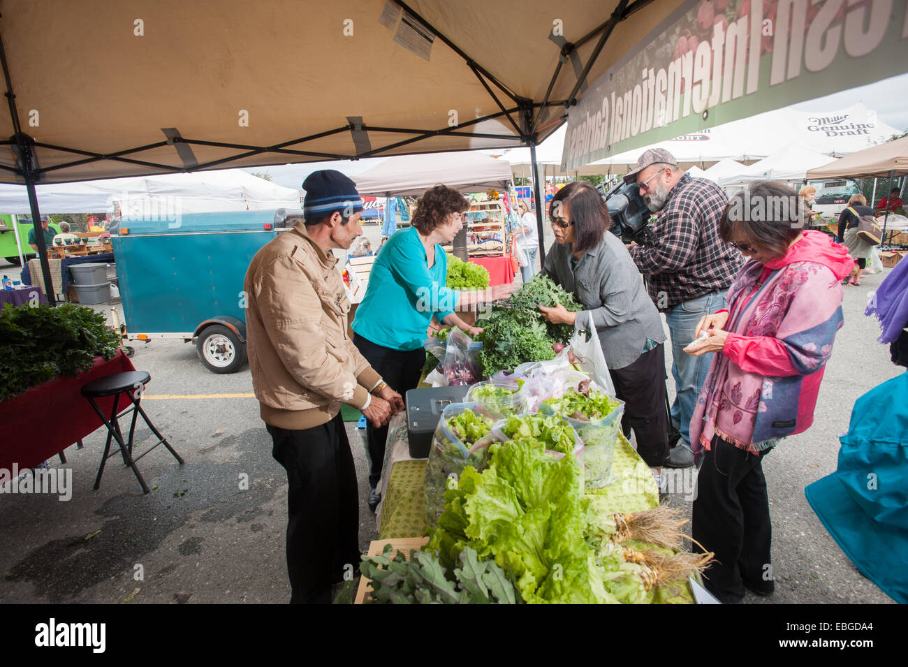 Fresh vegetable booth at a farmers market - Stock Image