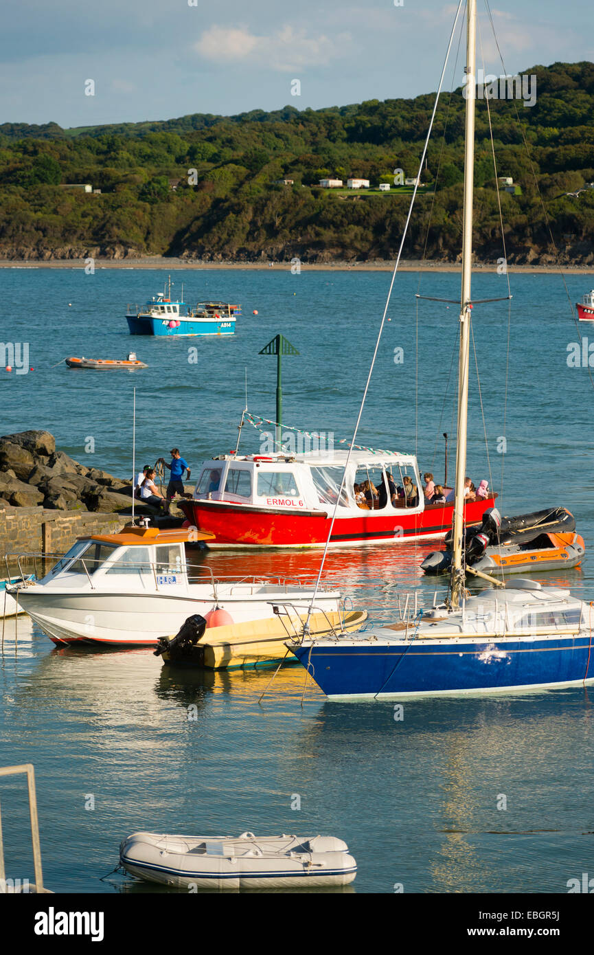 September sunshine: Pleasure boats at Cei Newydd / New Quay, on the Cardigan Bay coast of Ceredigion, west Wales - Stock Image