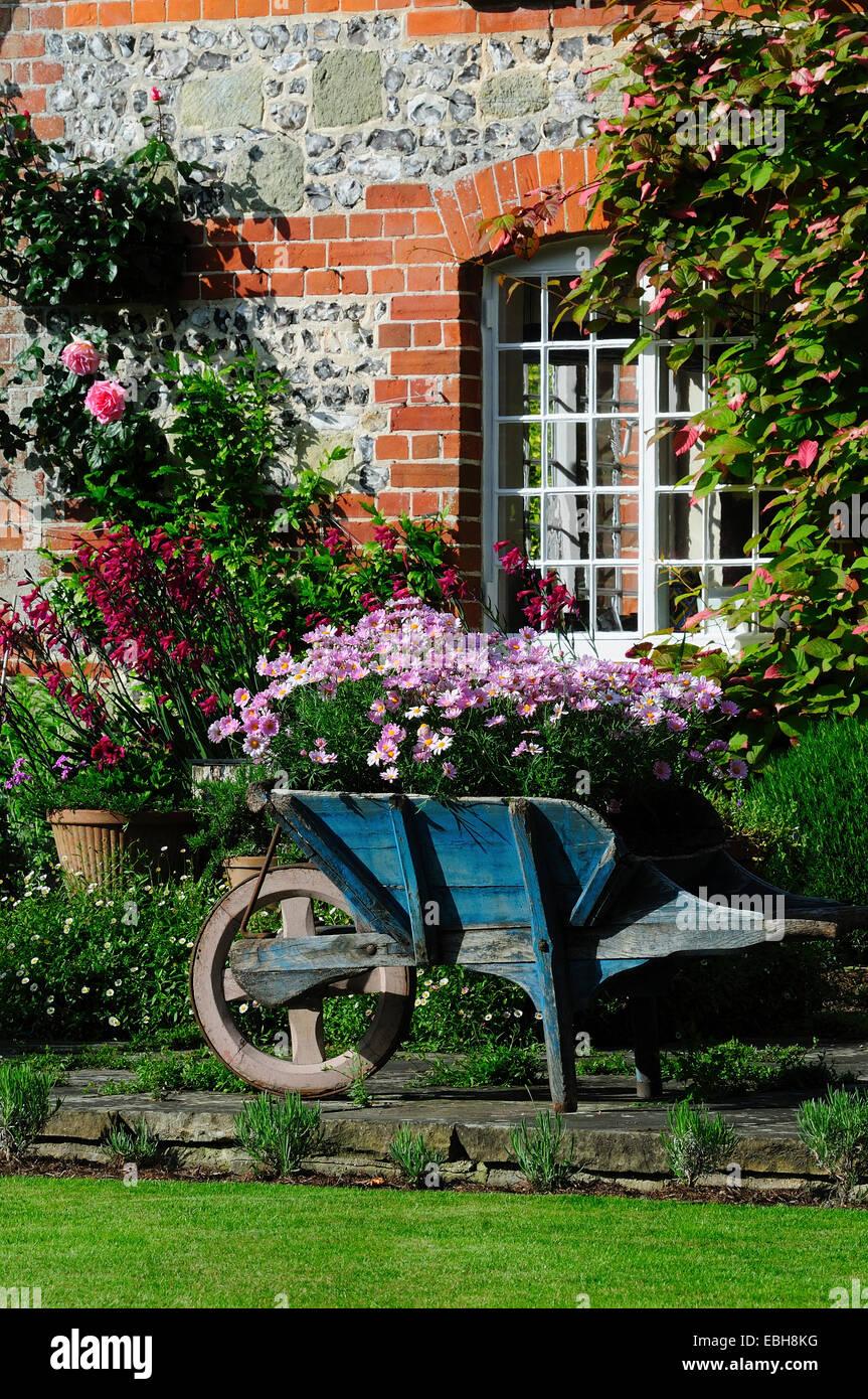 A wheelbarrow full of flowers in a cottage garden. UK - Stock Image