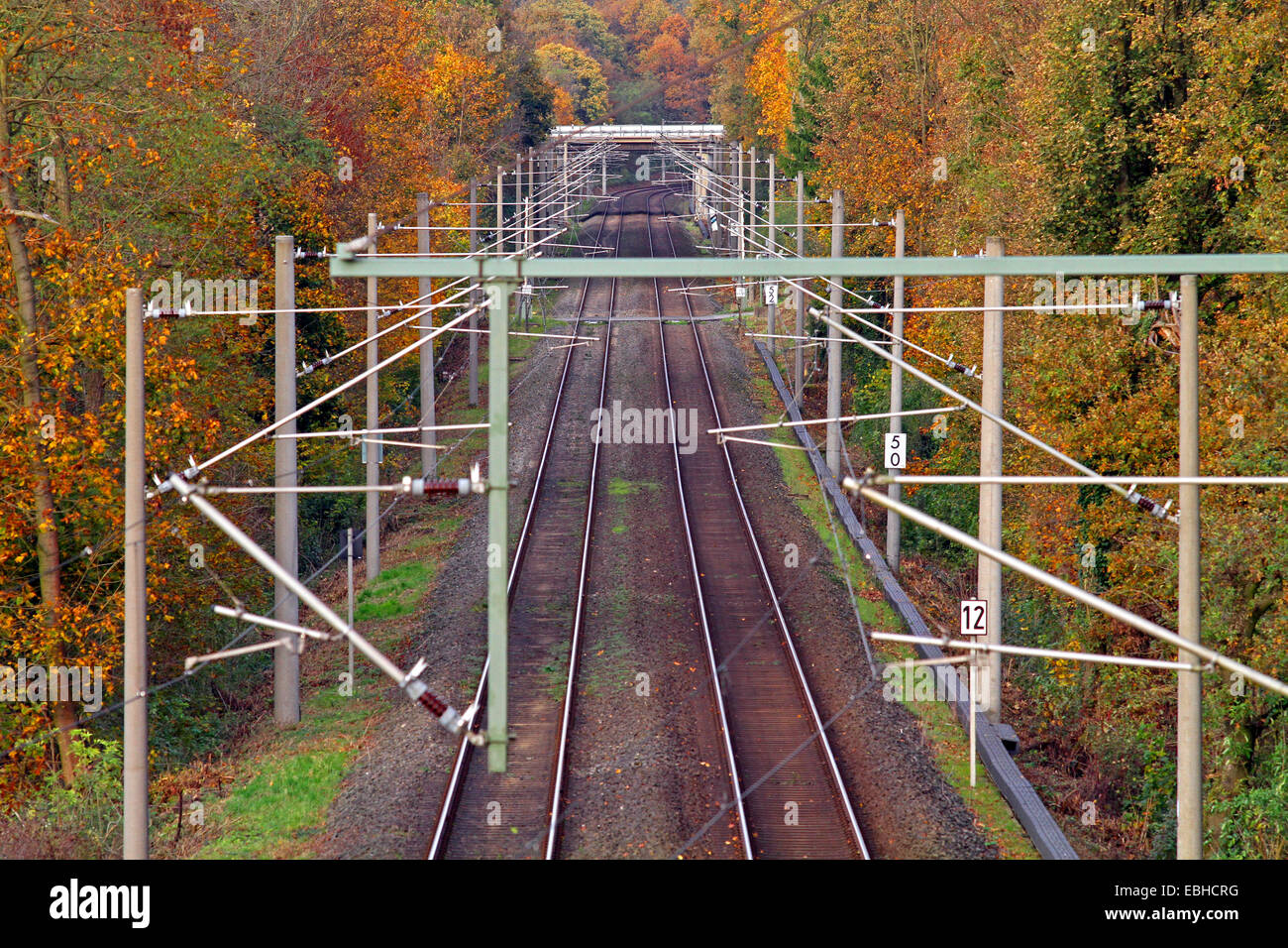 railtracks through autumn forest, Germany - Stock Image