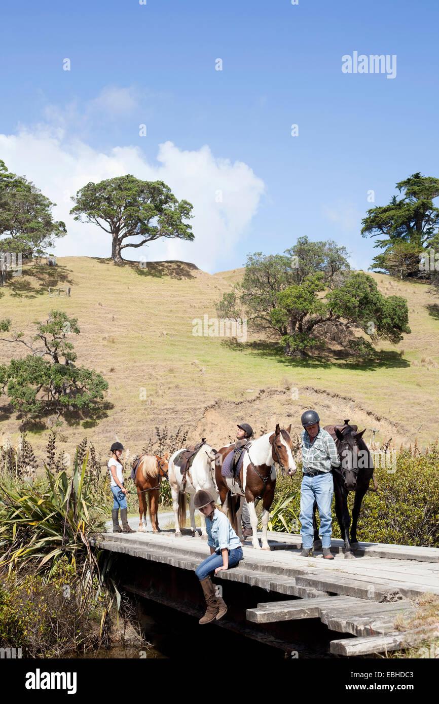 Horse riders taking break, Pakiri Beach, Auckland, New Zealand - Stock Image