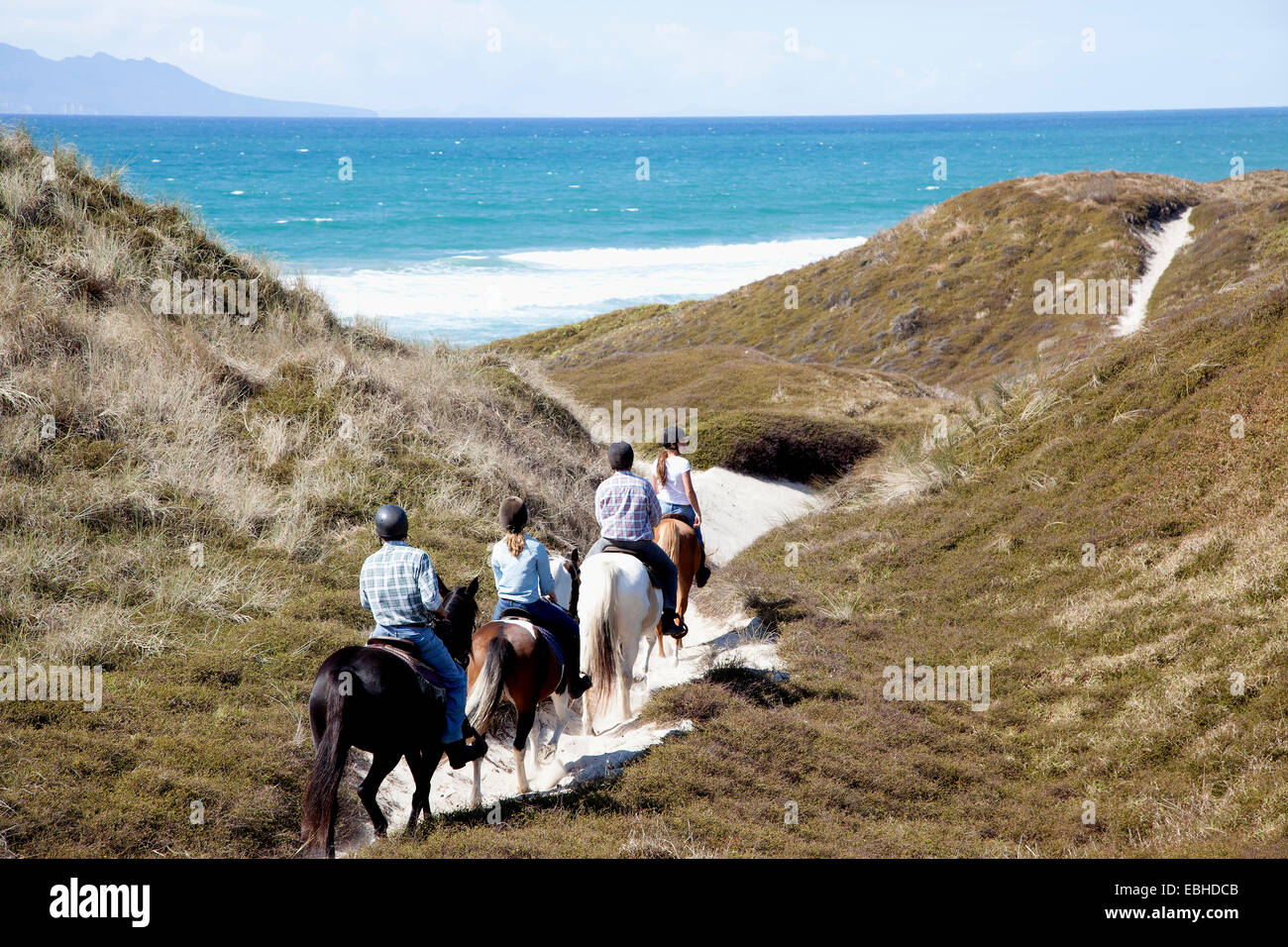 Horse riders heading down to Pakiri Beach, Auckland, New Zealand - Stock Image