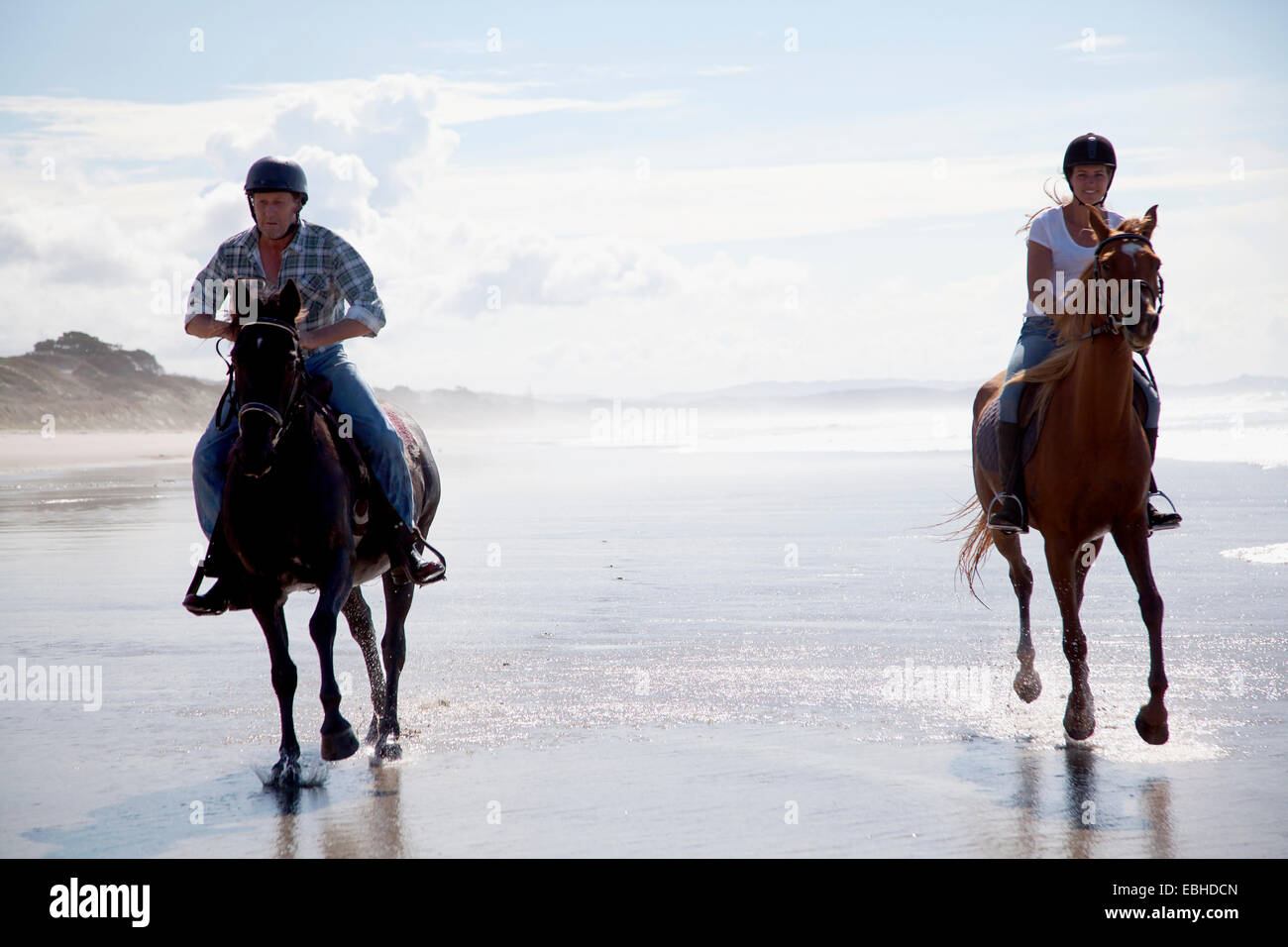Horse riders galloping, Pakiri Beach, Auckland, New Zealand - Stock Image