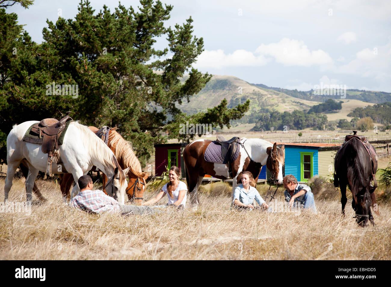 Horse riders taking break on grass, Pakiri Beach, Auckland, New Zealand - Stock Image