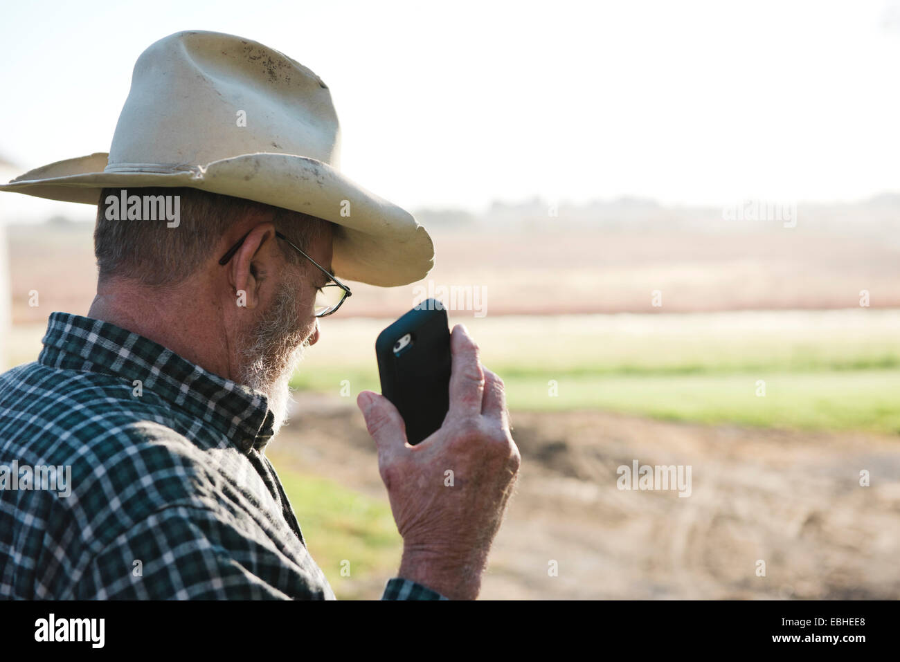 Over shoulder view of senior male farmer holding up smartphone, Plattsburg, Missouri, USA - Stock Image