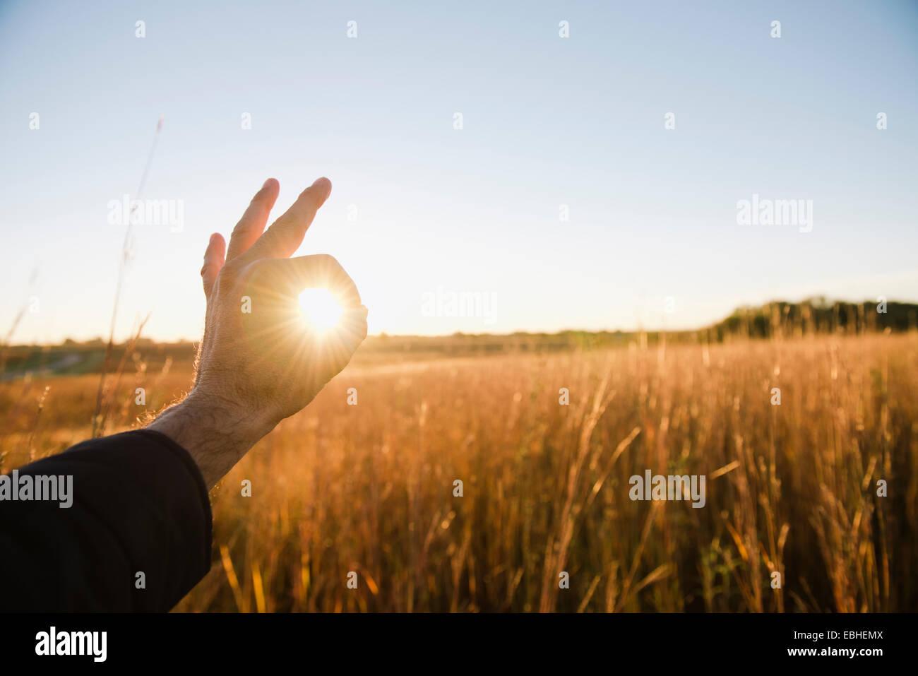 Hand of farmer encircling sun in wheat field at dusk, Plattsburg, Missouri, USA - Stock Image